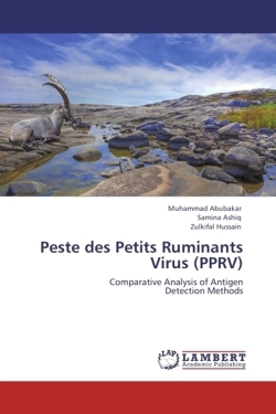 Peste des Petits Ruminants Virus (PPRV): Comparative Analysis of Antigen Detection Methods