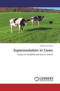 Superovulation in Cows - EL-sherry, Taymour