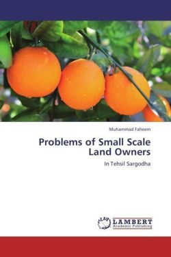 Problems of Small Scale Land Owners - Faheem, Muhammad