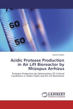 Acidic Protease Production in Air Lift Bioreactor by Rhizopus Arrhizus