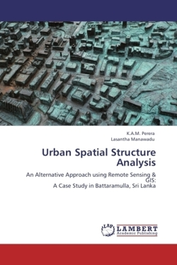 Urban Spatial Structure Analysis