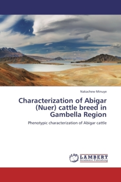 Characterization of Abigar (Nuer) cattle breed in Gambella Region: Phenotypic characterization of Abigar cattle