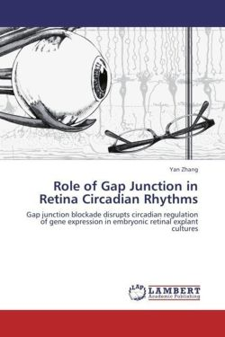 Role of Gap Junction in Retina Circadian Rhythms - Zhang, Yan