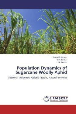 Population Dynamics of Sugarcane Woolly Aphid