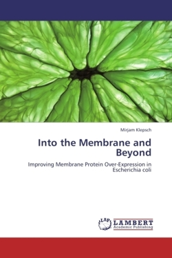 Into the Membrane and Beyond - Klepsch, Mirjam