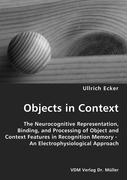 Objects in Context