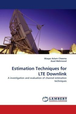 Estimation Techniques for LTE Downlink
