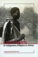 Land Rights of Indigenous Peoples in Africa: With Special Focus on Central, Eastern and Southern Africa
