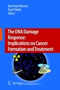 The DNA Damage Response: Implications on Cancer Formation and Treatment