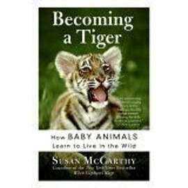 Becoming A Tiger : How Baby Animals Learn To Live In The Wild - Susan Mccarth