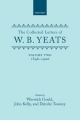 The Collected Letters of W. B. Yeats: Volume II: 1896-1900 - W. B. Yeats; John Kelly; Deirdre Toomey; Warwick Gould