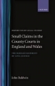 Small Claims in the County Courts in England and Wales - John Baldwin