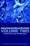 Neuroconstructivism - II: Perspectives and Prospects