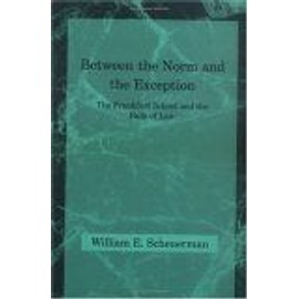 Between The Norm And The Exception : The Frankfurt School And The Rule Of Law Studies In Contemporary German Social Thought - William E. Sc