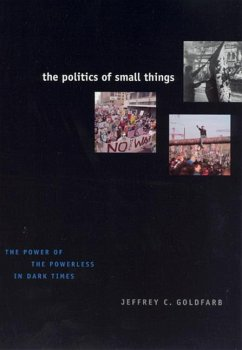 The Politics of Small Things - Goldfarb, Jeffrey C.