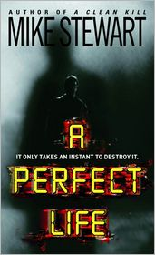A Perfect Life - Mike Stewart