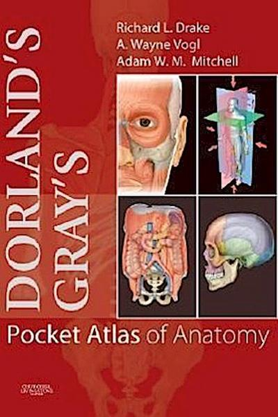 Dorland'S/Gray'S Pocket Atlas of Anatomy - Richard Drake