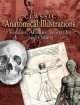 Classic Anatomical Illustrations - Andreas Vesalius;  Albinus;  Leonardo