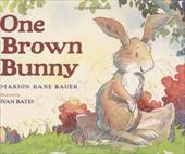 One Brown Bunny - Bauer, Marion Dane