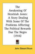The Awakening of Hezekiah Jones: A Story Dealing with Some of the Problems Affecting the Political Rewards Due the Negro (1916)