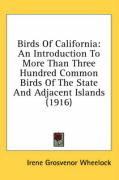 Birds of California: An Introduction to More Than Three Hundred Common Birds of the State and Adjacent Islands (1916)