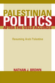 Palestinian Politics after the Oslo Accords - Nathan Brown