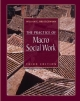 Practice of Macro Social Work - William G. Brueggemann