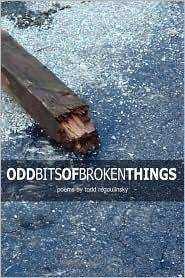 Odd Bits Of Broken Things - Todd Regoulinsky