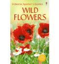 Wild Flowers - Christopher Humphries