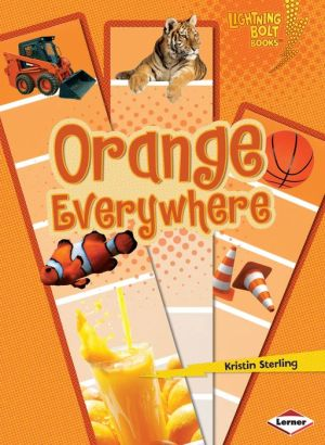Orange Everywhere - Kristin Sterling