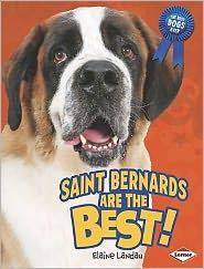 Saint Bernards Are the Best!