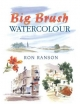 Big Brush Watercolour - Ron Ranson