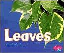 Leaves - Vijaya Khisty Bodach