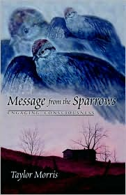 Message from the Sparrows: Engaging Consciousness - Taylor Morris