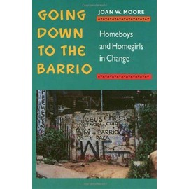 Going Down to the Barrio PB: Homeboys and Homegirls in Change - Joan W. Moore