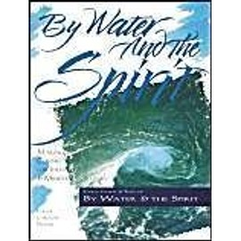 By Water And The Spirit : Making Connections For Identity And Ministry The Christian Initiation Series - Gayle Felton