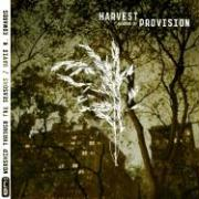 Harvest: The Season of Provision
