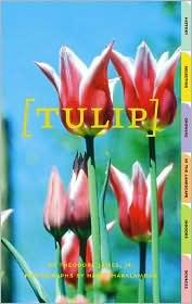 Tulip - Theodore James, Harry Haralambou (Photographer)