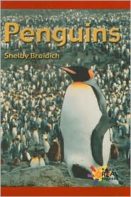 Penguins - Braidich, Shelby