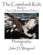 Dyan, Penelope: The Comeback Kids, Book 3, the California Brown Pelican
