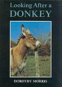 Looking After a Donkey (Donkeys)