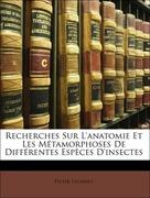 Lyonnet, Pieter: Recherches Sur L´anatomie Et Les Métamorphoses De Différentes Espèces D´insectes