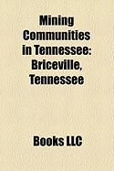 Mining Communities in Tennessee: Briceville, Tennessee