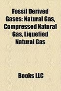 Fossil Derived Gases: Compressed Natural Gas