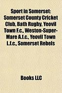 Sport in Somerset: Somerset County Cricket Club