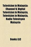 Television in Malaysia: Channel V