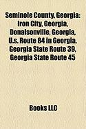 Seminole County, Georgia: Iron City, Georgia, Donalsonville, Georgia, U.S. Route 84 in Georgia, Georgia State Route 39, Georgia State Route 45