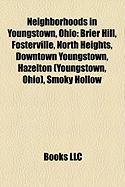 Neighborhoods in Youngstown, Ohio: Brier Hill, Fosterville, North Heights, Downtown Youngstown, Hazelton (Youngstown, Ohio), Smoky Hollow