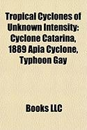Tropical Cyclones of Unknown Intensity: Cyclone Catarina, 1889 Apia Cyclone, Typhoon Gay
