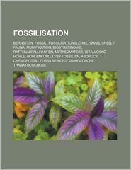 Fossilisation - B Cher Gruppe (Editor)